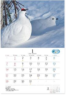 カレンダー「雷鳥の四季 2018」1月