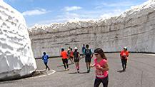 雪壁を駆け抜ける 第14回乗鞍天空マラソン
