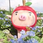 手打そばの宿 石田屋(2016年6月25日)