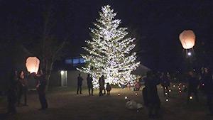 もっと!信州77「軽井沢町編」|クリスマスタウン軽井沢