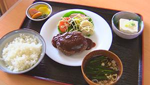 もっと!信州77「大鹿村編」| ジビエ料理(鹿肉ハンバーグ)