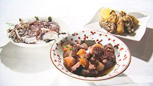 たこ料理|旬食ハンター! ~山と海の幸をゲットせよ~(10月6日 土曜 あさ9時30分)