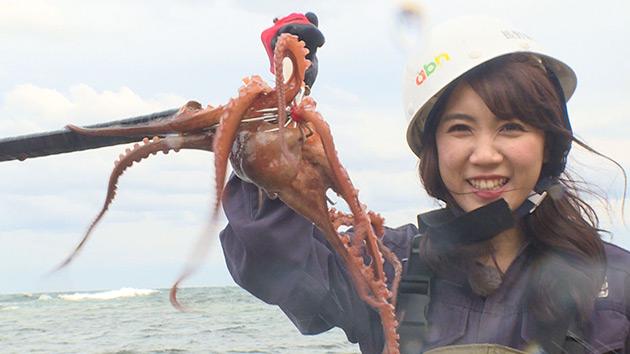 たこ漁|旬食ハンター! ~山と海の幸をゲットせよ~(10月6日 土曜 あさ9時30分)