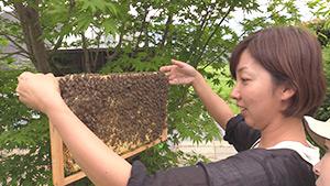 もっと!信州77「中川村編」|養蜂女子部