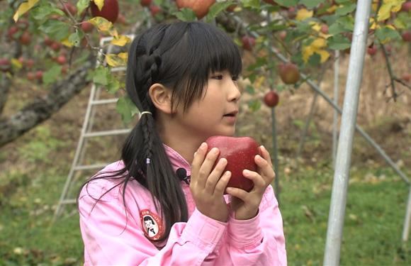 第33回「リンゴ ふじ 編」(2015年12月11日放送)