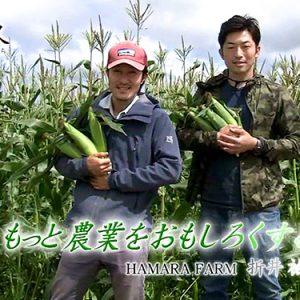 第29回 HAMARA FARM(ハマラファーム) 代表 折井祐介