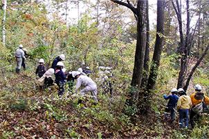 森林の里親促進事業2017 青木村 森林整備活動の参加風景