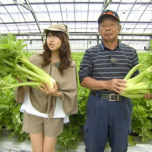 第5回【食材】セロリ 5月28日(土)放送