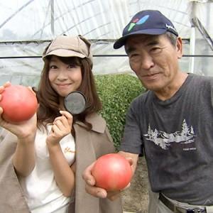 第8回【食材】トマト 8月27日(土)放送