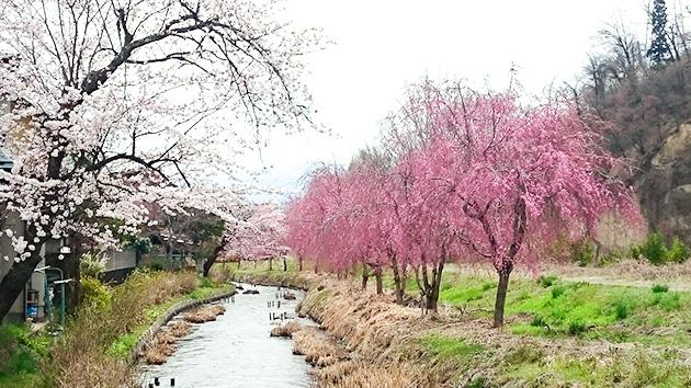 妻科地区 農業用水|長野市の原点・妻科をぶらり
