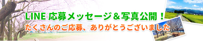 LINE応募メッセージ&写真公開!