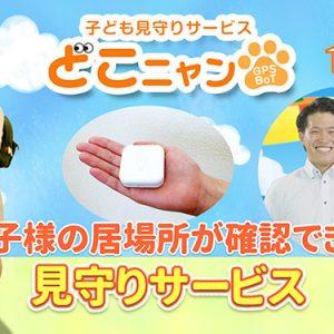 第5話・どこニャンGPS BoT(8月10日 金曜 午後6時55分)