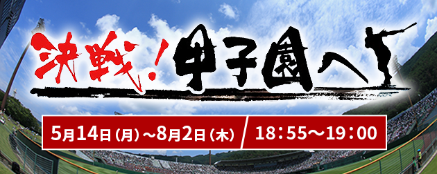 決戦!甲子園へ 放送スケジュール
